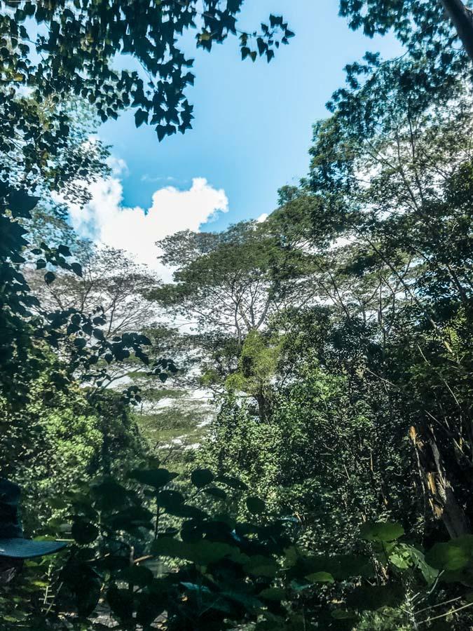 Hiking to Secret Falls in Kauai, Hawaii
