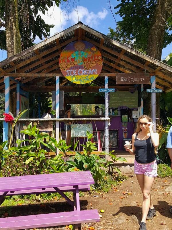 Coconut Glen's vegan ice cream on The Road to Hana