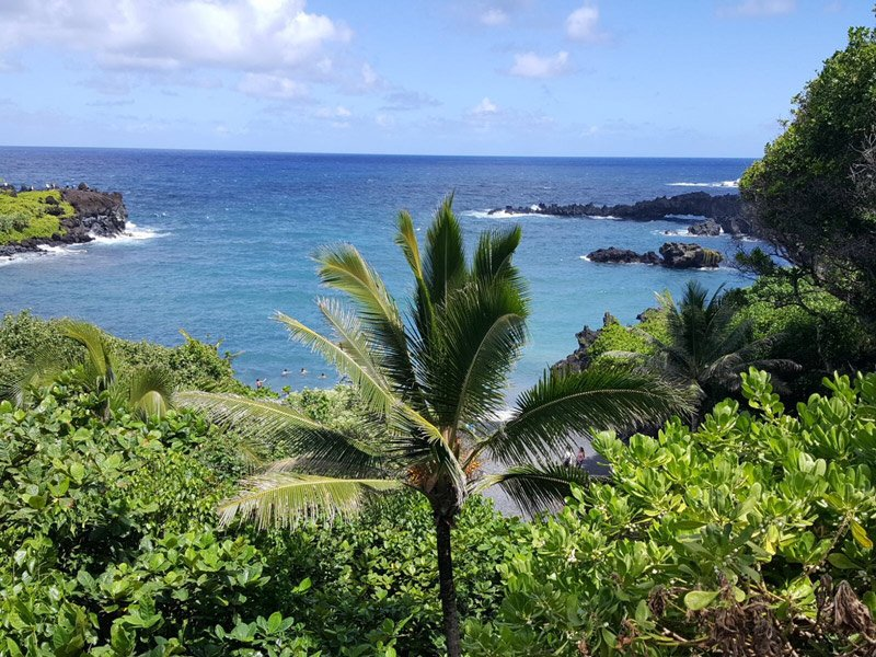 View Point from The Road to Hana's Black Sand Beach