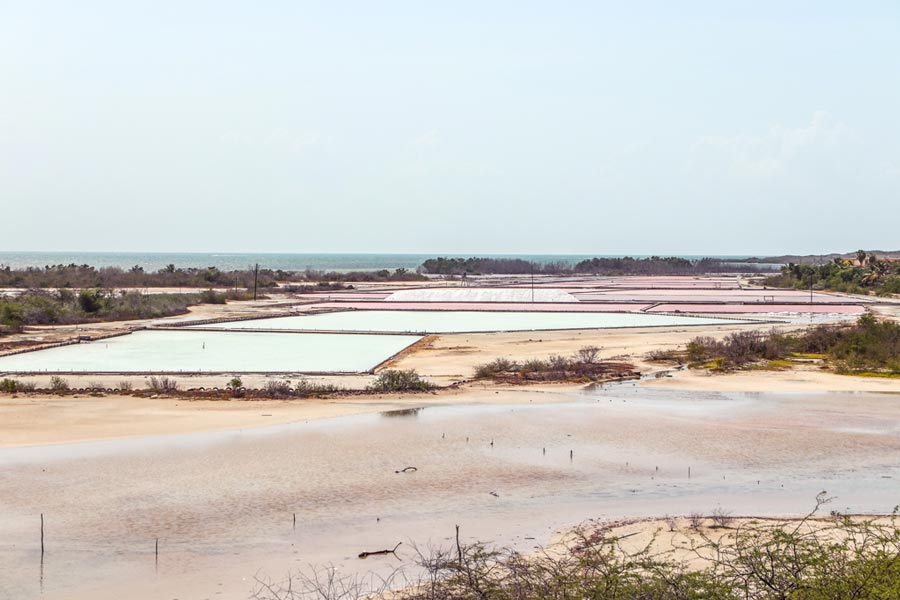Pink Salt Flats Salinas de Cabo Rojo Puerto Rico