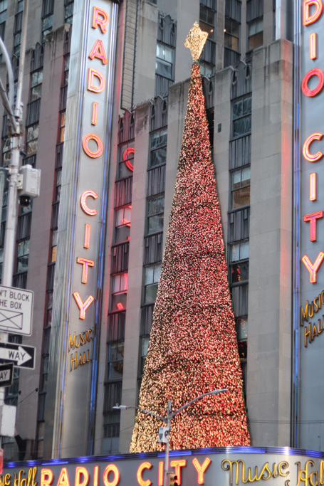 Visit Radio City Music Hall in December