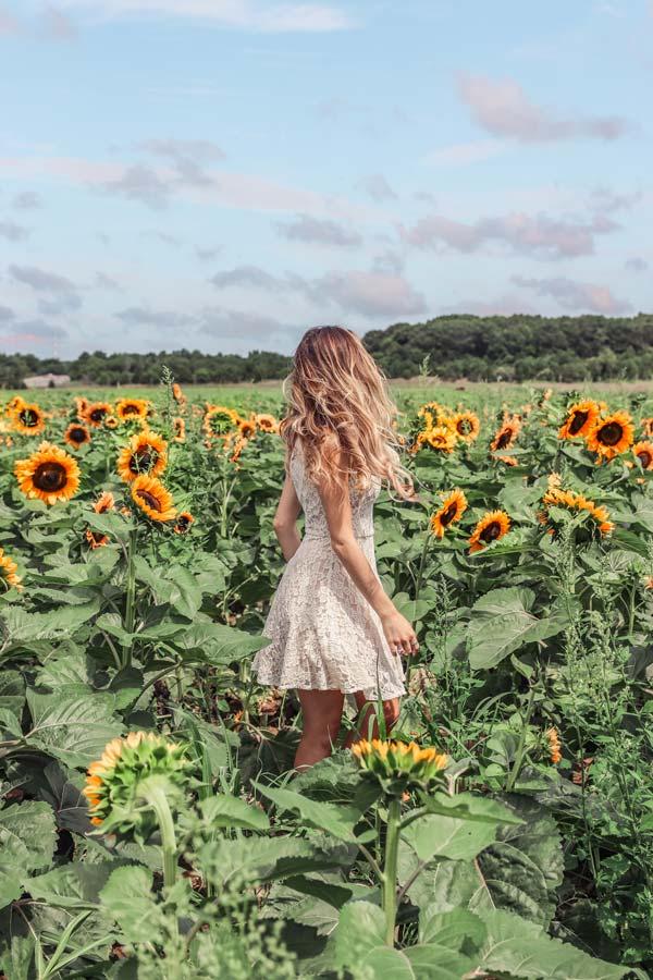 Dancing in the Sunflower fields in Long Island