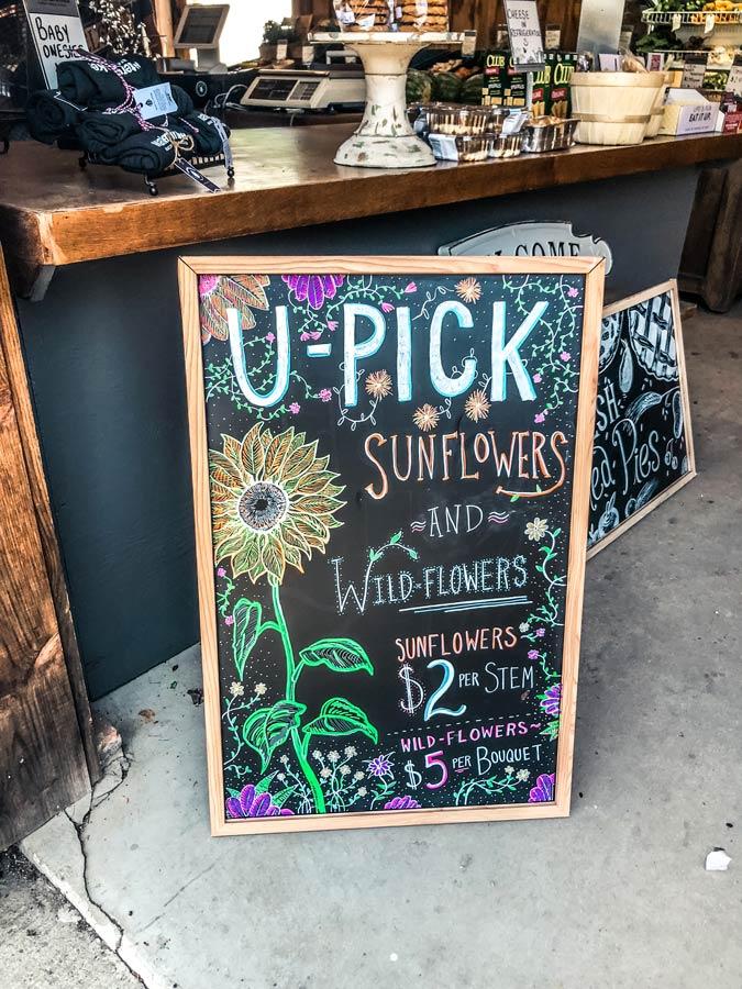 u Pick Sunflowers