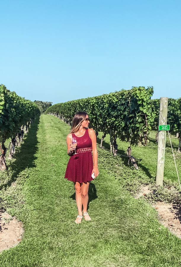 One of the best vineyards in Long Island, NY includes Wölffer Estate