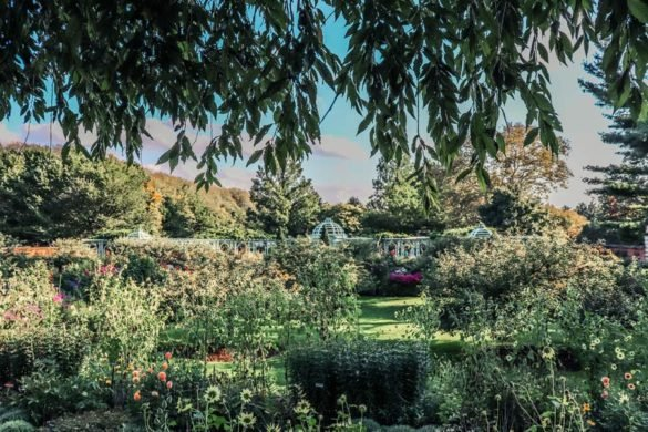 The Old Westbury Garden is one of the best things to see on Long Island