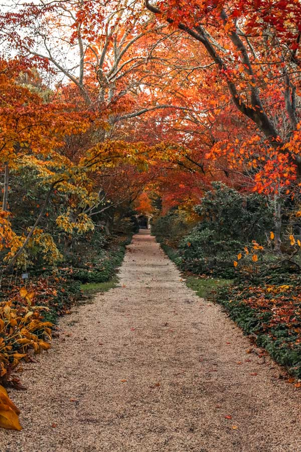 Planting Fields during the Fall in Long Island is on of the most instagrammable places