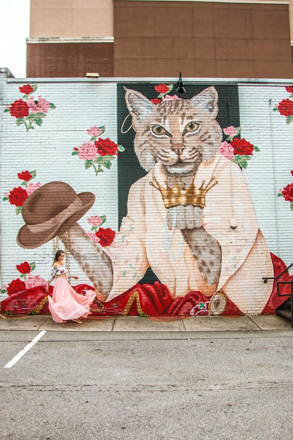 Sprinkles the Bobcat Mural Raleigh