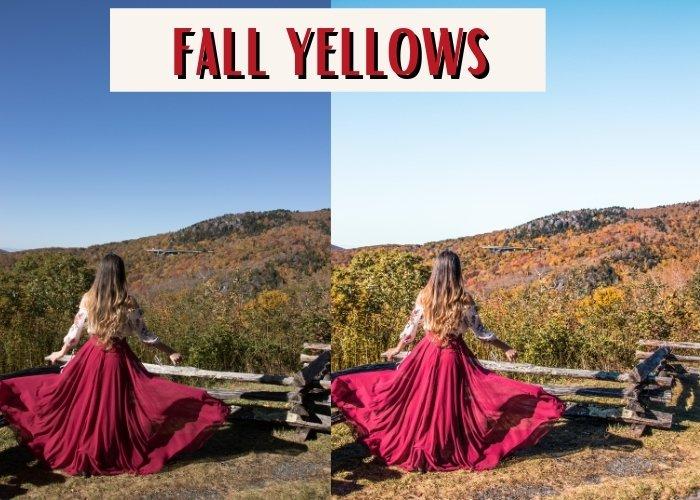 Fall Yellows Findlovetravel presets