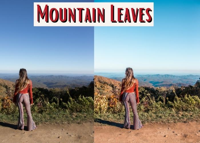 mountain leaves findlovetravel presets