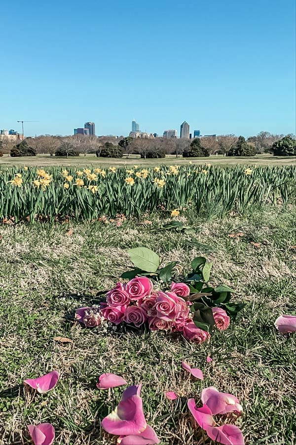 Dix Park with Raleigh Skyline view
