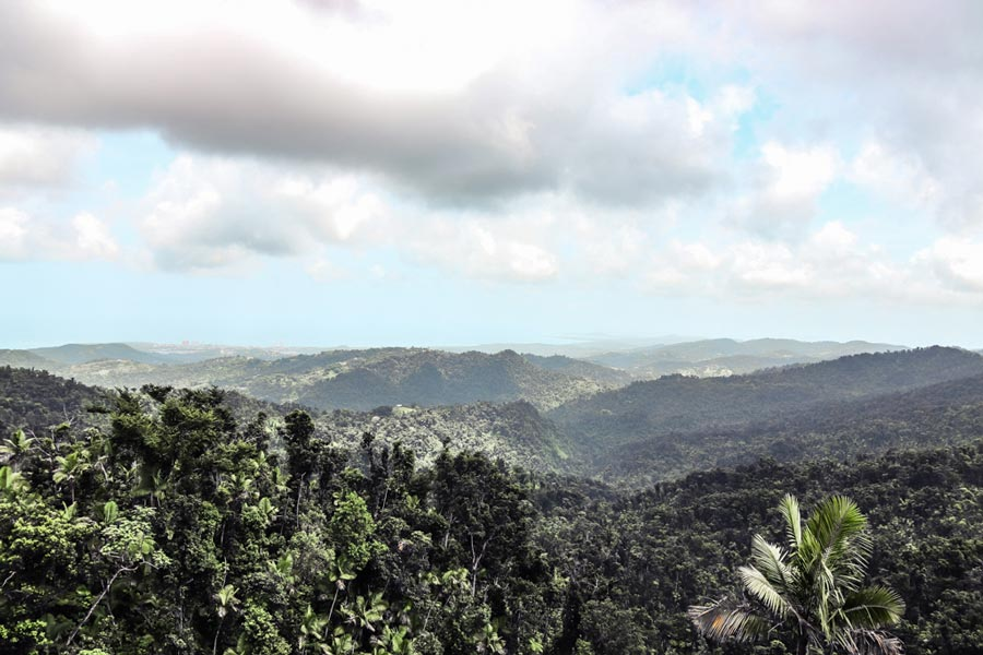 Views from Yokahu Tower in Puerto Rico in El Yunque