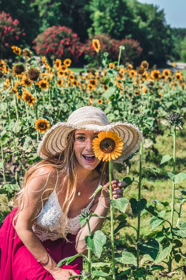 Sunflower Farm in North Carolina. Holding a sunflower in front of face.
