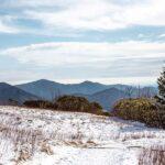 Roan Mountain in Winter