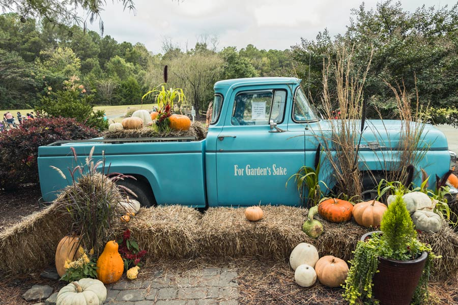 For Gardens Sake vintage blue truck display with hay and pumpkins