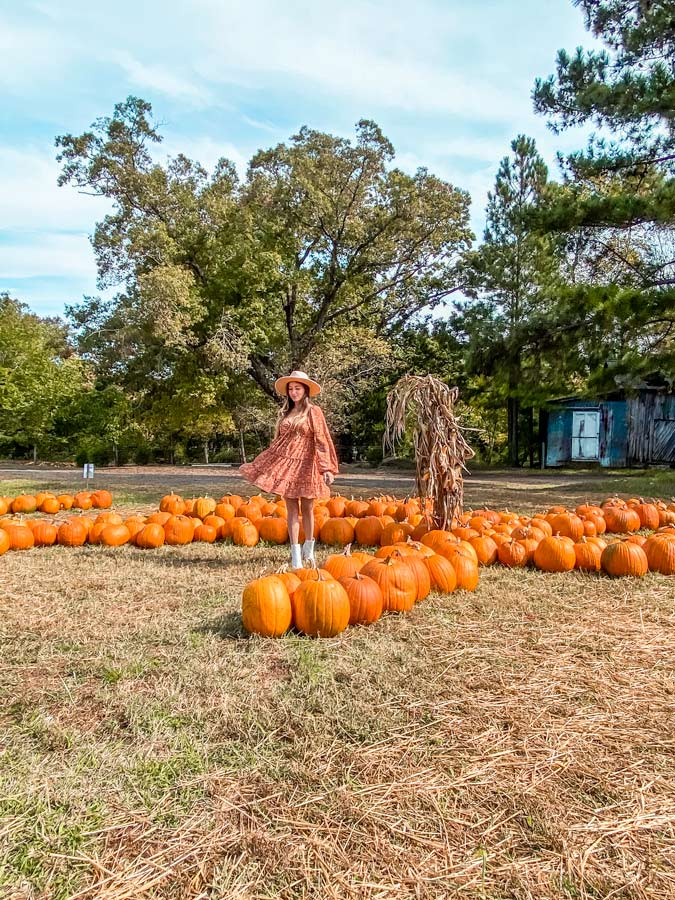 Pumpkin Patch in Raleigh with woman in orange dress standing by pumpkins